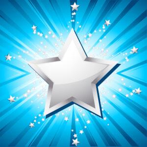 Festive Silver Star